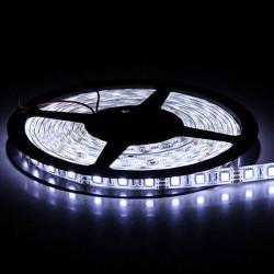 STRISCIA LED BIANCO GHIACCIO 5050, 5MT